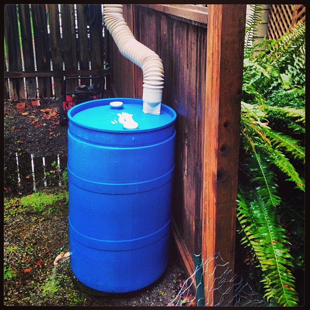 A #rainbarrel captures #rain from your roof and is a quick way to #conserve #water and help prevent pollution by reducing #runoff. A 1000 sq ft roof can capture 625 gallons of #rainwater from a 1 inch storm! Rebates available www.sandiego.gov/water/conservation